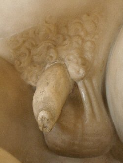 The Dying Gaul's penis