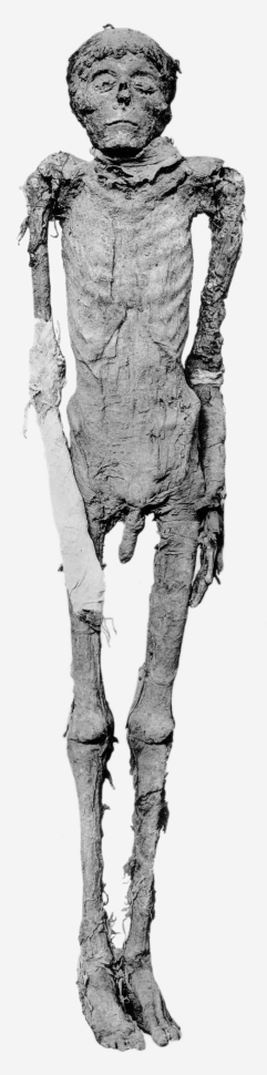 Mummy of King Ahmose I