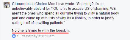 ''No one is trying to vilify the foreskin''