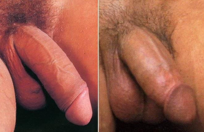 nude body tatts women